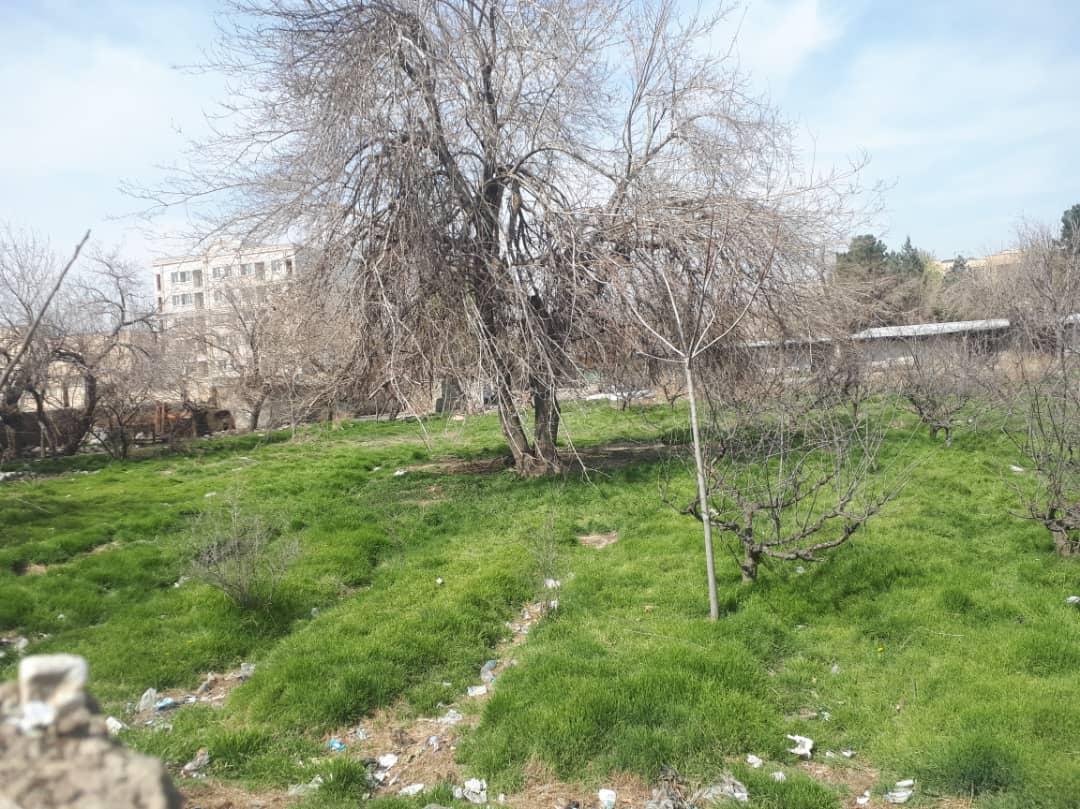 باغ شادآباد